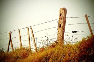 fence-336645_640